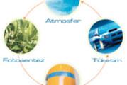 Bio Enerji – BioDizel – BioGaz