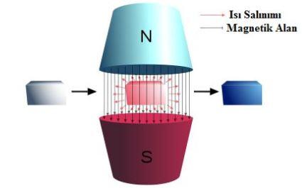 Manyetik Soğutma Sistemi