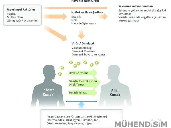 Mevsimsel Faktörlerin Virüslerin Bulaşmasına Etkileri